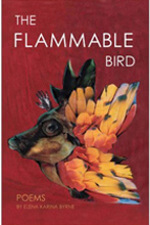 The Flammable Bird by Elena Karina Byrne
