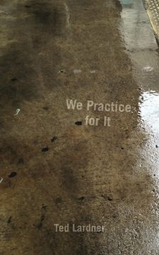We Practice For It by Ted Lardner