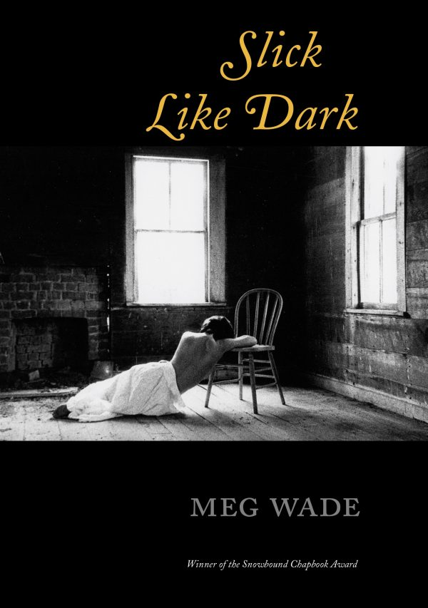 Slick Like Dark, by Meg Wade